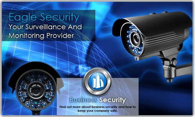 panther security guard services